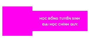hoc bong tuyen sinh dai hoc chinh quy